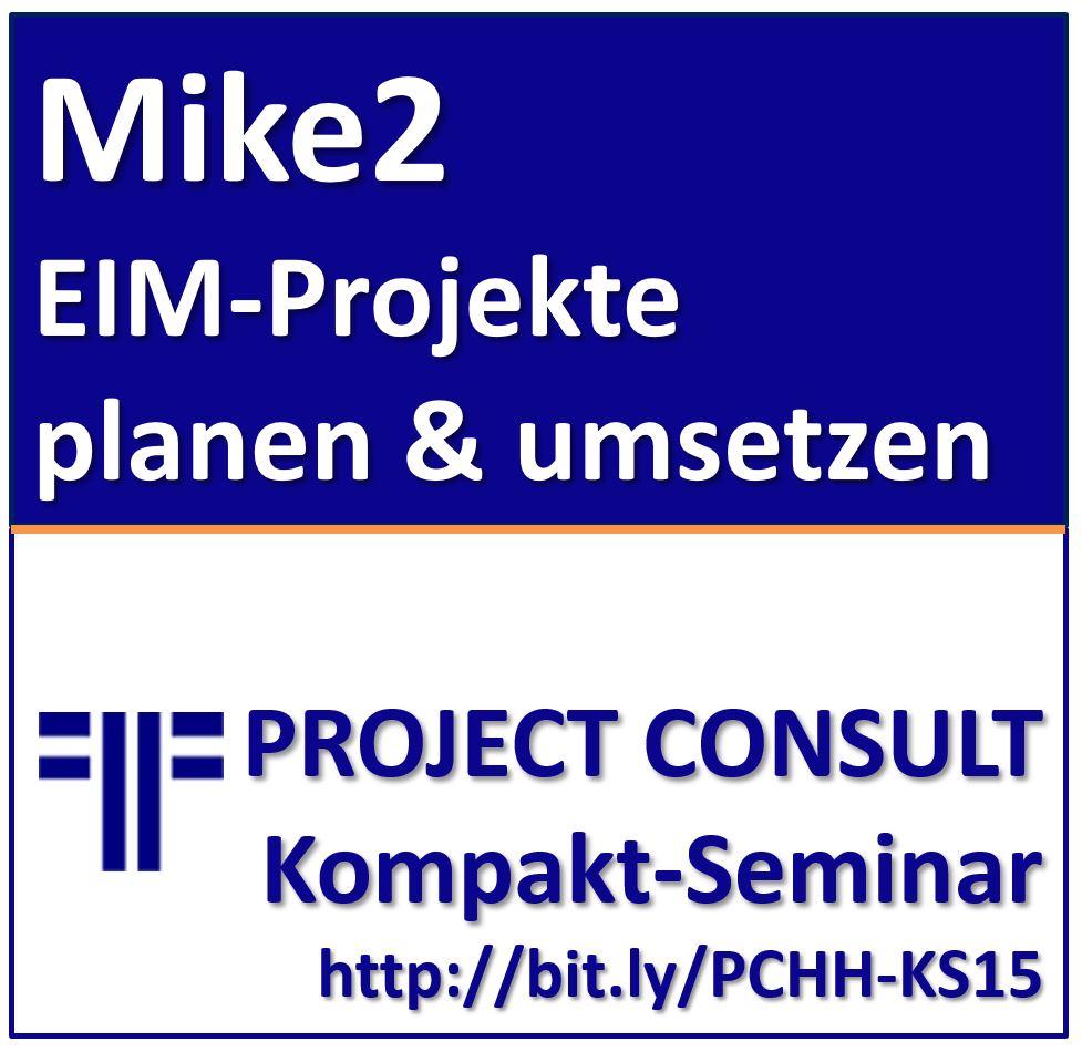Informations-, Projekt- und Change-Management nach Mike2