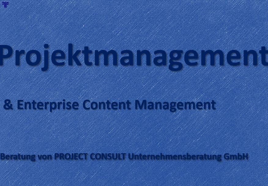 Projektmanagement (PM)